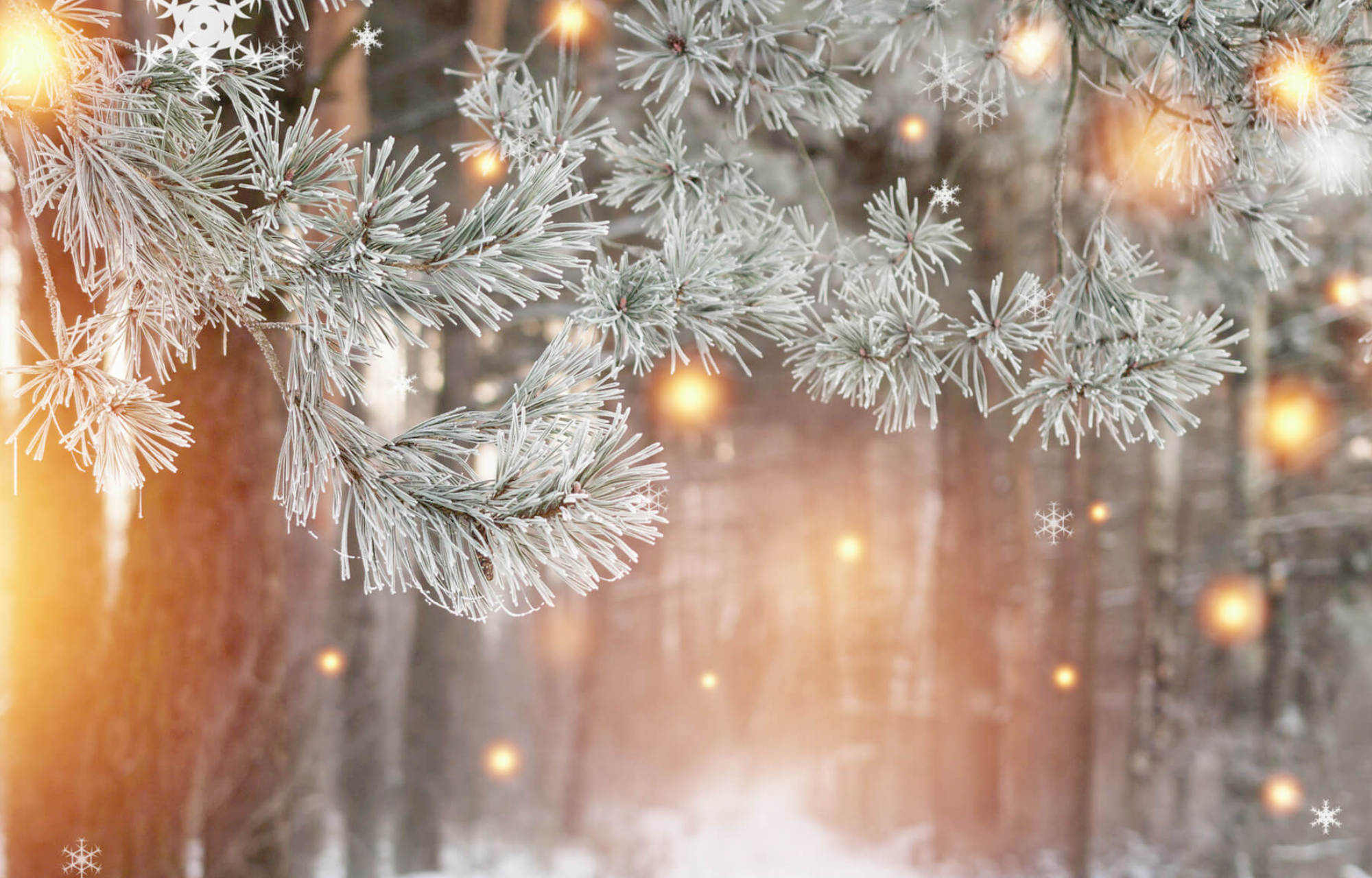 Joulun ja uudenvuoden aukioloajat