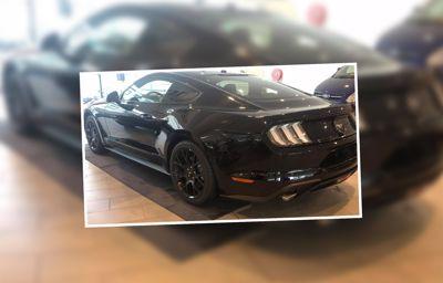 Kom het nieuwe model Mustang 2018 ontdekken in onze showroom