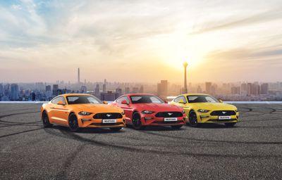 Uitnodiging voor alle Mustang-rijders en liefhebbers