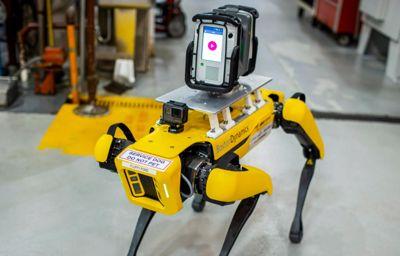 Ford repère les usines avec des robots chiens
