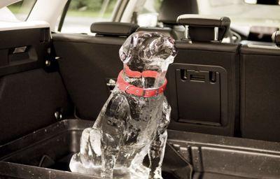 « Rear Occupant Alert » : l'avertissement pour vérifier le siège arrière