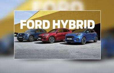 Hybrid Familie