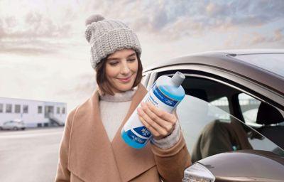 Sparfuchs-Aktion: Scheibenklar (-20°C) à 5 Liter