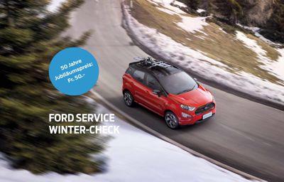 Ford Service Winter-Check