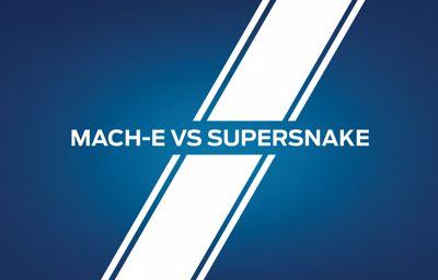 **Mach-E contre Supersnake**: un événement à ne pas manquer