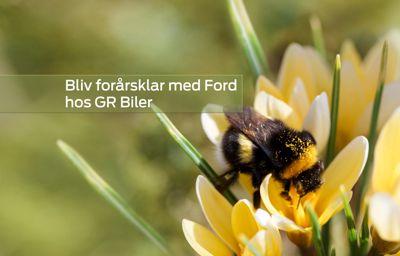 GR Biler - Ford Skive | Forårstilbud på værkstedet