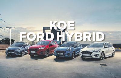 Koe Ford Hybrid -mallisto Oulun Wetterillä 18.-23.10