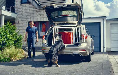 Ford présente Emil, le chien qui participe à améliorer la sécurité des animaux en voiture
