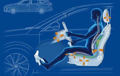 Mal de dos : le confort de la Ford Focus salué par un organisme d'experts médicaux !