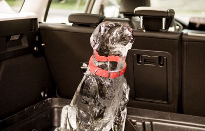 Cette technologie Ford permet d'éviter que des enfants (ou animaux) ne soient oubliés à bord en cas de canicule