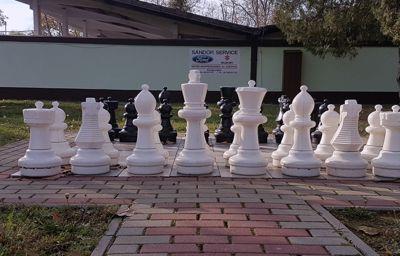 Demeter Dorina sakkozó támogatása