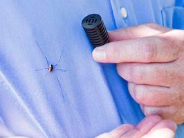 A Ford mérnökeinek találmánya a pókok távol tartására