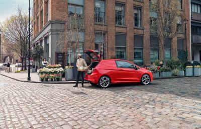 BUSINESS IS LOOKING UP  - New Fiesta Van