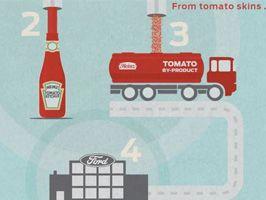 Tomaat of tomauto?