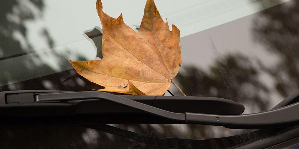 Ford Ruitenwissers kopen, vervangen