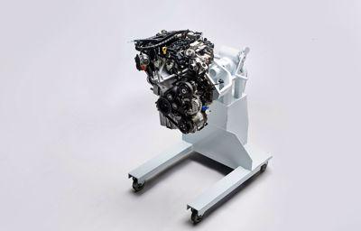 Ford wint voor vijfde jaar op rij prijs voor beste compacte motor