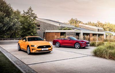 Ford etablerer forhandler i Lyngdal