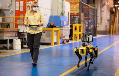Ford eksperimenterer med «hunderoboter» for mer effektiv produksjon