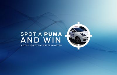 Ford Puma Competition