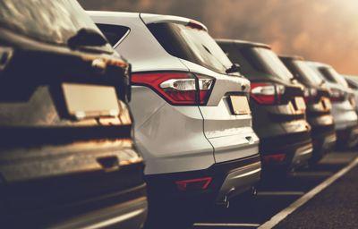 Nagrody, wyróżnienia i nowości Forda w roku 2020