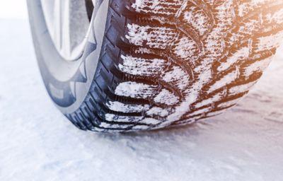 Zima z Fordem w Szumilas AT