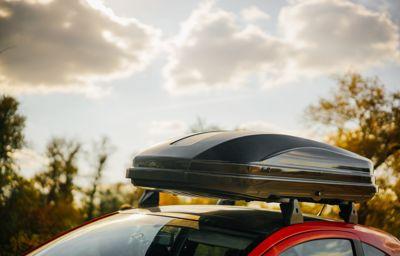Bagażnik dachowy Thule Box Pacific 600 w atrakcyjnej cenie
