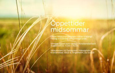 Vi på Dahlqvists önskar Er alla en Glad Midsommar!