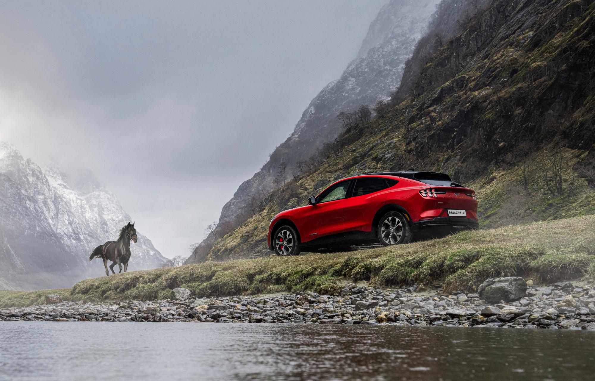Mustang Mach-E og hest